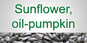 Sunflower, oil-pumpkin